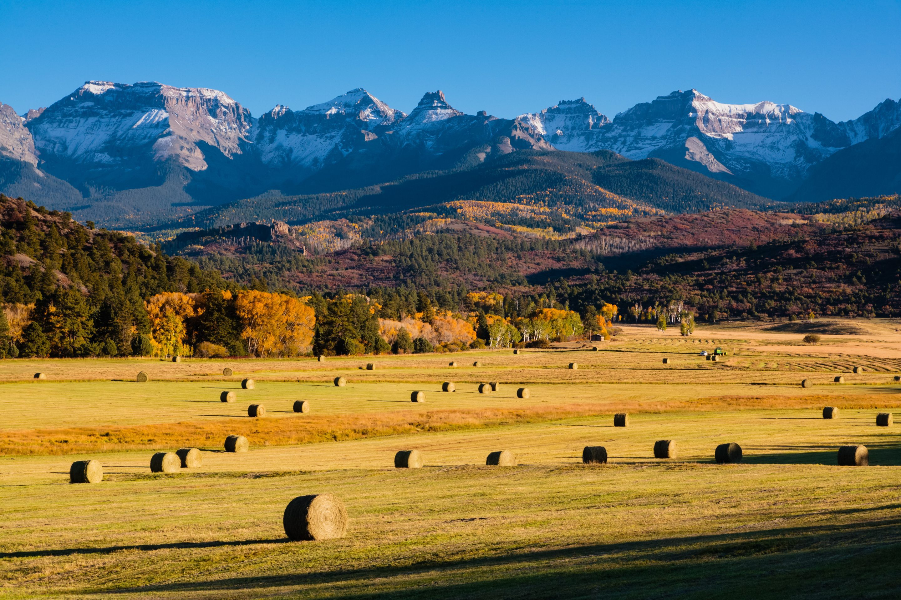 A field with hay bales at the foot of a forest and mountain.