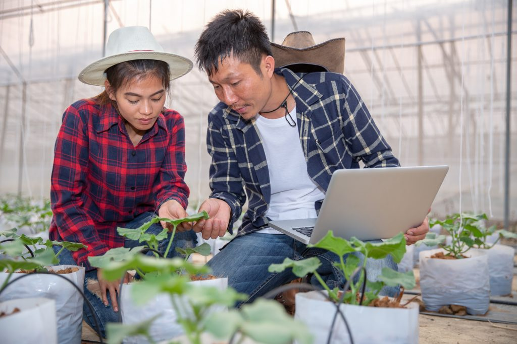 Woman and man assess plants in greenhouse